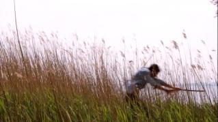 Wheat Run